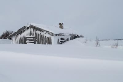 Snø fåkk